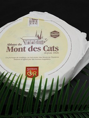 Monts des cats